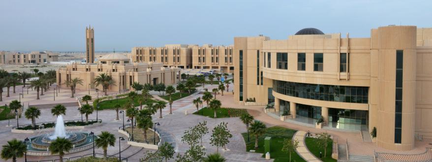 Dammam University